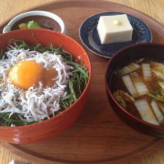 和歌山定食 釜揚げしらす丼(ディヨンナナショクドウ (d47食堂))