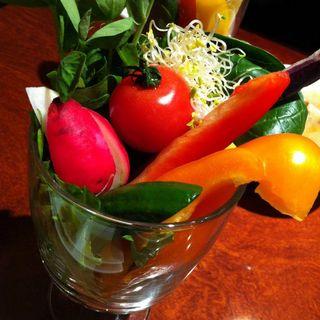 厳選野菜サラダコーナーの新鮮野菜(やさいの王様 日比谷シャンテ店)