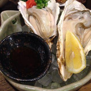 生牡蠣(夢ぼうず)
