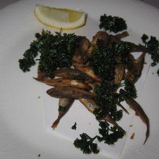 豆鯵のフライ(グリル 木の実 (grill KONOMI))