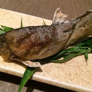 若鮎塩焼き(旬菜酒房 さ蔵 )