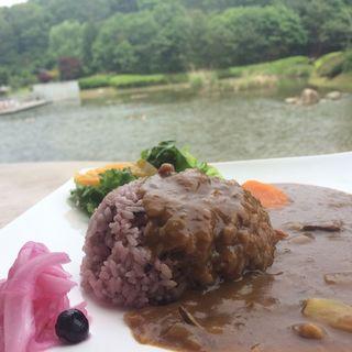 古代米カレー(古代米屋レストラン グリーンゲイブル )