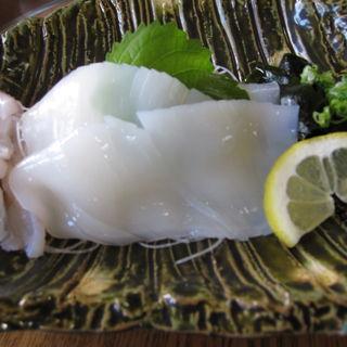 いかの刺身(おけしょう鮮魚の海中苑 )