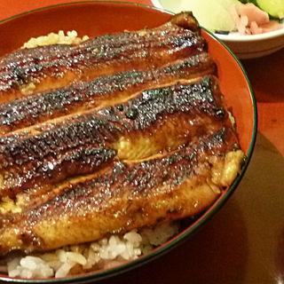 個性豊かな味を楽しめる!大阪府で人気の丼もの店