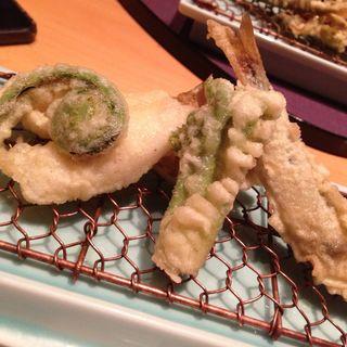 山菜の天ぷら(淡悦 (たんえつ))