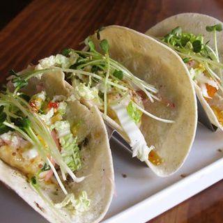 Tempra Shrimp Tacos(Lucky Belly)