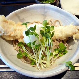 海老天ぷら蕎麦(冷)(嵐山よしむら)