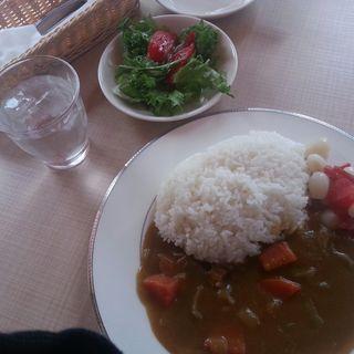カレー(野菜サラダ食べ放題)(ななつの花)