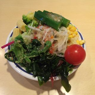 Salad Selections from the Salad Buffet(ステーキガスト 川崎野川店  )