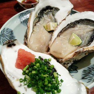 生カキ(吉仙)