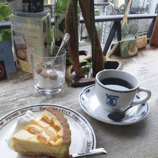 レアチーズケーキのタルト(パンセ)