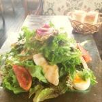 自家製鶏ハム 半熟卵のサラダ