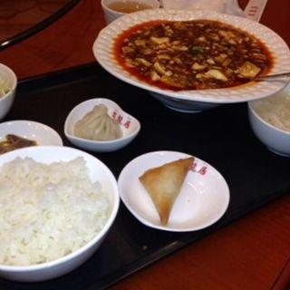 麻婆豆腐定食(中国食府 双龍居 天満駅前店 )