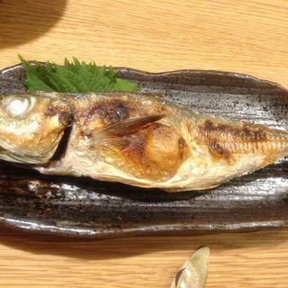 焼き魚定食(魚とし (ウオトシ))