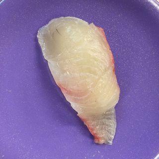 平政(漁場直送回転寿司ぶっちぎり!!! (ぎょじょうちょくそうかいてんずしぶっちぎり!!!))