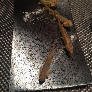 稚鮎のフリット(ディナー)