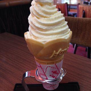 ソフトクリーム バニラ(苔乃茶屋 (こけのちゃや))