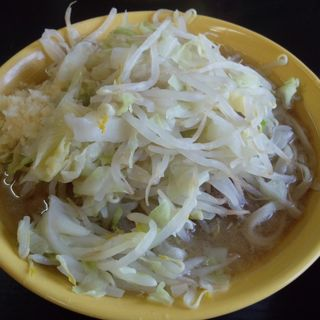小ラーメン 麺少なめ・ニンニク (ラーメン二郎 茨城守谷店 )