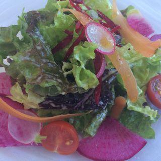 農園野菜のサラダ(ダンゼロ (DANZERO))