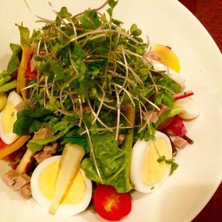 自家製ツナと10 品目の野菜、たまごのサラダ (モン・トレゾール 東京 (mon tresor tokyo))
