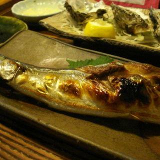 秋刀魚塩焼(虎丸)