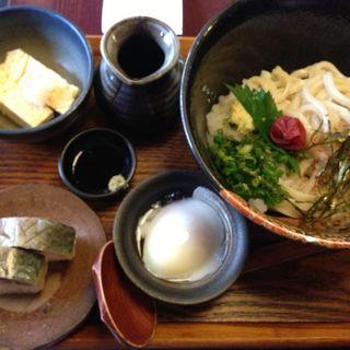 南高梅と大葉のぶっかけうどん(い草製麺所 (いぐさせいめんじょ))