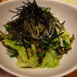 グリーンサラダ(HAMBURG LABO (ハンバーグ ラボ))
