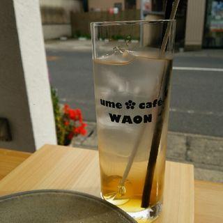 梅ジュース 青梅(ume cafe WAON)