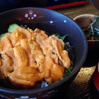 ウニ丼(夢岬 (ゆめみさき))