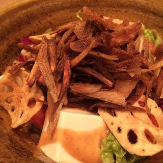 京とうふ藤野 牛蒡、蓮根、お豆富の金胡麻サラダ(KICHIRI 新宿WEST)