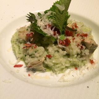 牡蠣と大葉のリゾット(オストレア 銀座8丁目店)