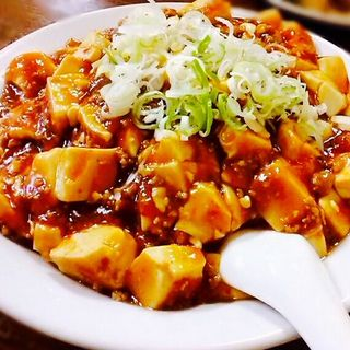 麻婆豆腐(龍府 1号店)