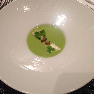 グリンピースの冷製スープ(ポンテ デル ピアット (PONTE DEL PIATTO))