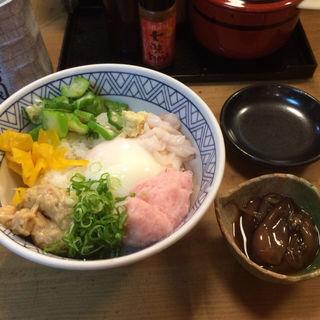 ネバネバ爆弾丼(丸万寿司本店 )