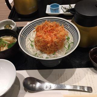 桜エビのかき揚げ天茶ご飯(四季五感 )