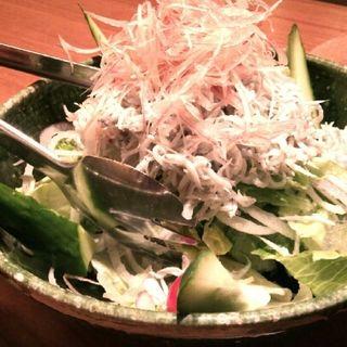 しらすサラダ(魚匠 銀平 丸の内店 )