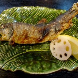 岩魚の塩焼き(栄茶屋 本店 (さかえちゃや))