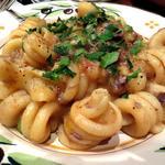 鴨肉とジャガイモ、ピゼッリのラグーソース