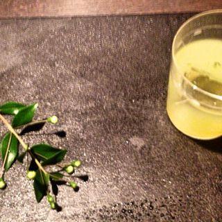 Tasting Menu:Four cocktails (GenYamamoto)