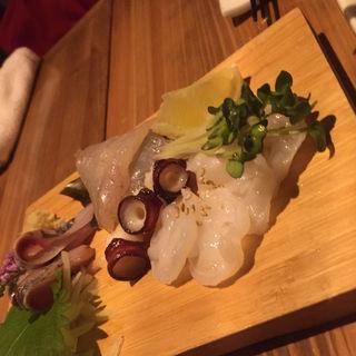 本日の天然鮮魚の盛り合わせ(若狭)
