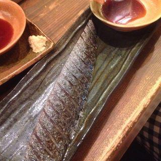 炙りたてしめさば(梅田日本酒バルEVISU (エビス))