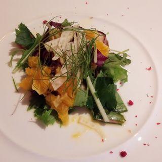 タコのテリーヌ オレンジのコンポートとフェンネルのサラダ(アマルフィイ・カステッロ (Amalfi CASTELLO))