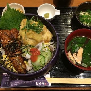 鱧三昧丼(堂島とろ家 阪急三番街店 (とろや))