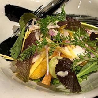 地野菜サラダ(糸 藤沢)