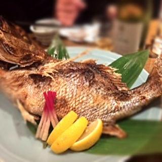 鯛塩焼き(魚可津)