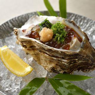 生牡蠣 醤油ジュレ(銀座 喰い切りひら山 (ひら山))