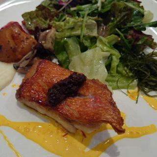 本日の鮮魚ランチ 〔パン or ライス付〕(ワッシーズダイニングスープル (Wassy's Dining Souple))