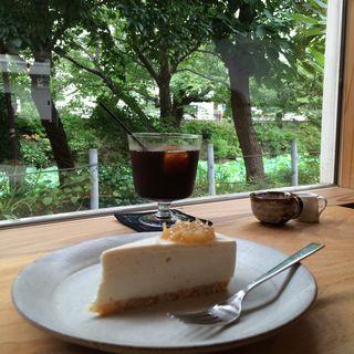 Iced coffee&Cheese cake(六月の鹿 )