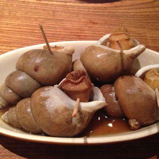 バイ貝のうま煮(UOKIN ビストロ 五反田店 (ウオキン))