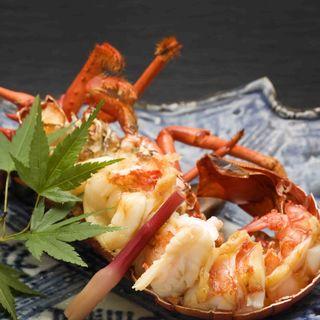 オマール海老のグリル(日本料理 「さくら」 ヒルトン東京お台場 )